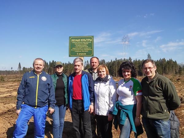 Во время посадки леса в Смолевичском районе